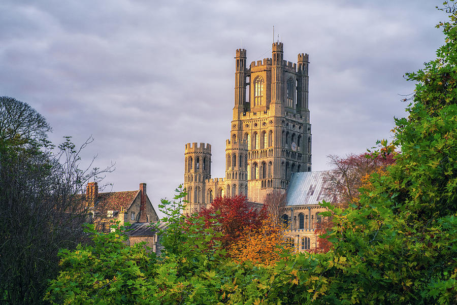 Autumn Colour at Ely by James Billings