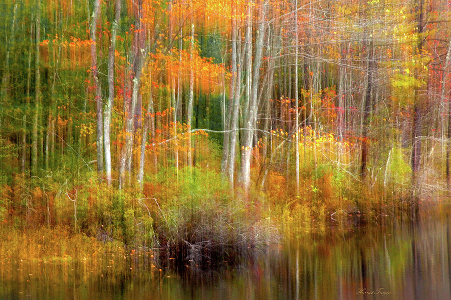 Autumn Dreamscape 3 by Harriet Feagin