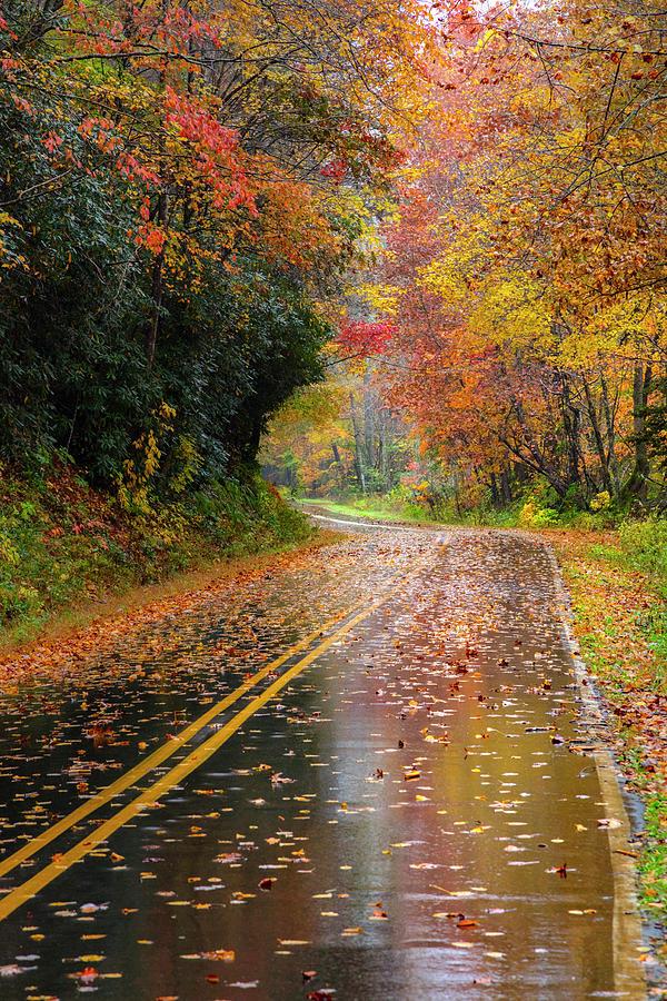 Autumn Drive II by Debra and Dave Vanderlaan