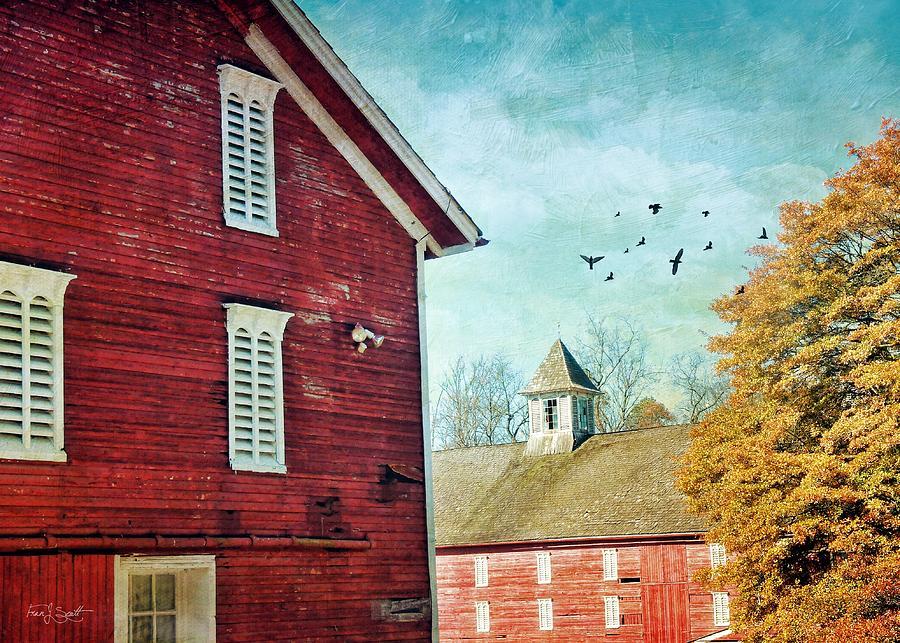 Autumn Farm by Fran J Scott