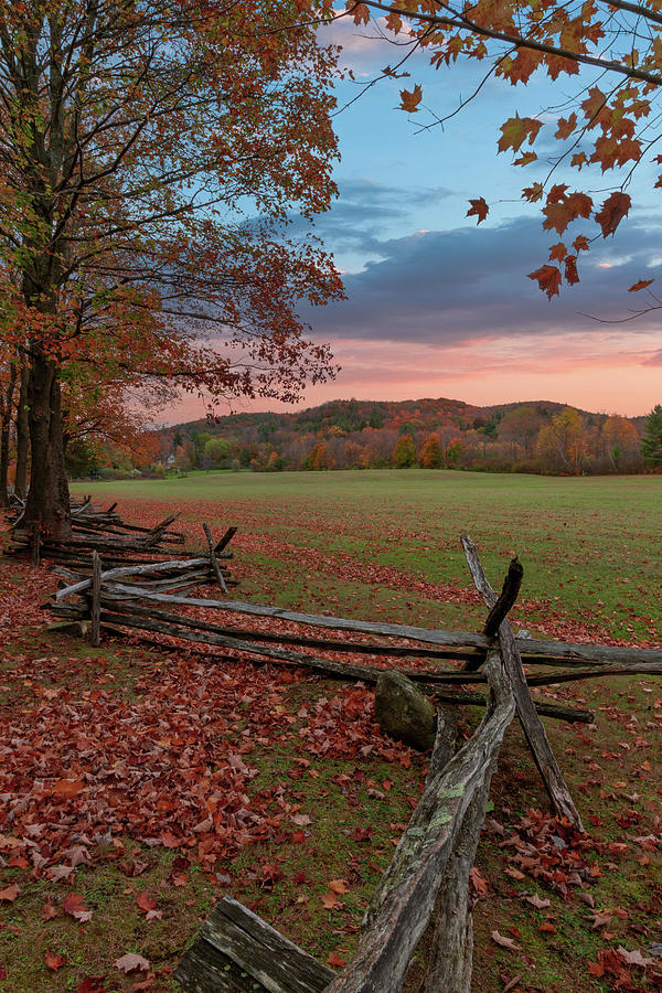 Autumn Fence Norfolk by Bill Wakeley