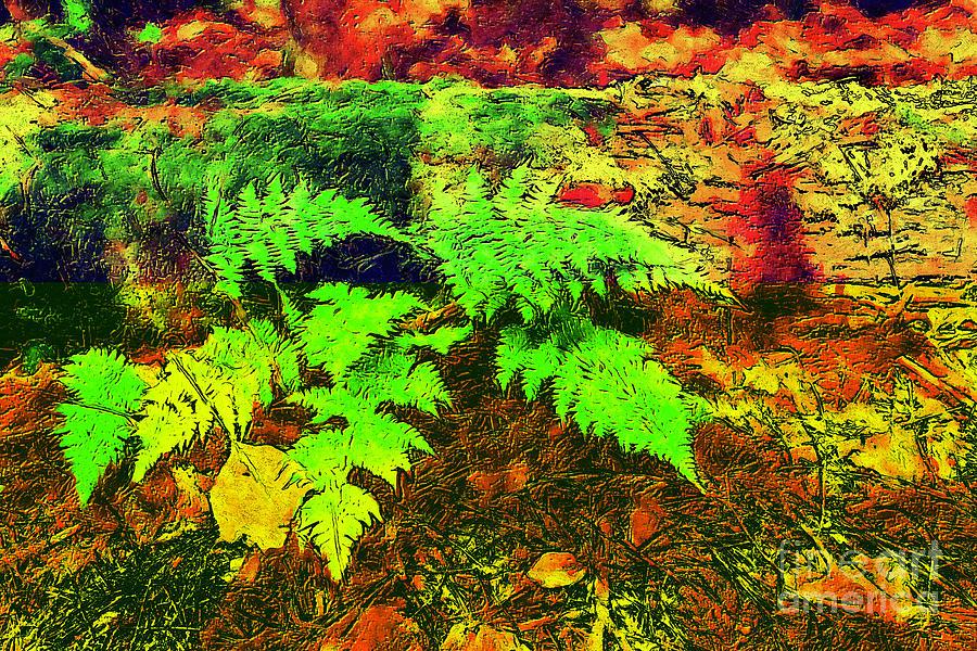Autumn Fern and Mossy Log fx by Dan Carmichael