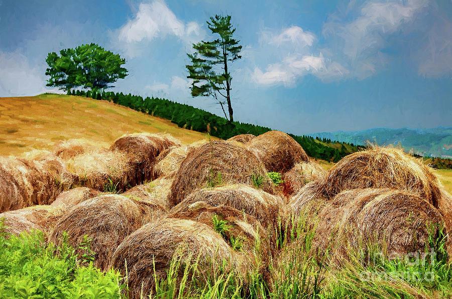Autumn Fields of Hay ap by Dan Carmichael