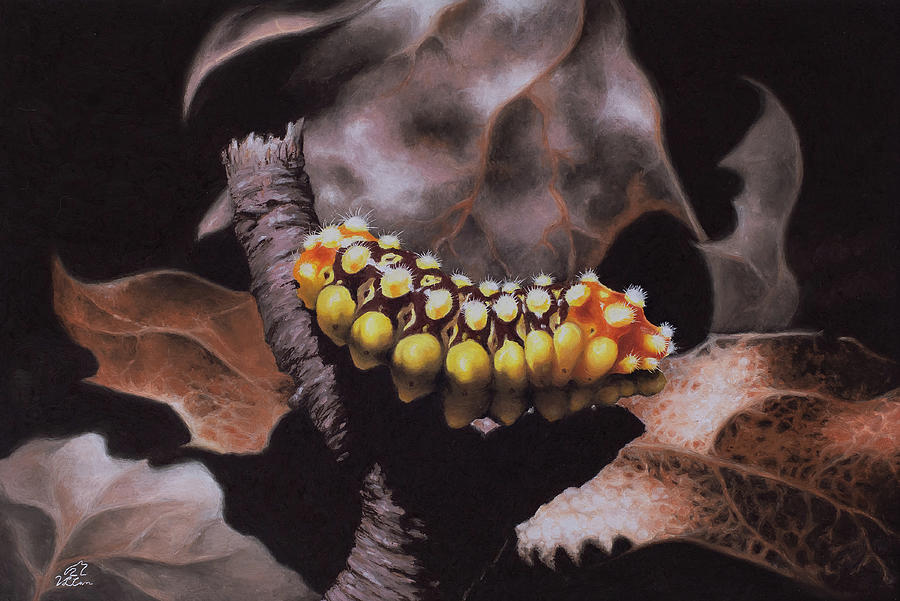 Nature Pastel - Autumn Fire / fall colors caterpillar print by V Leigh Carr