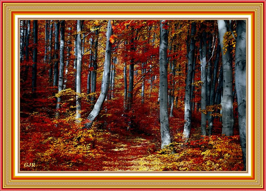 Autumn Forest Path - Winterton Park L A S - With Printed Frame. Digital Art