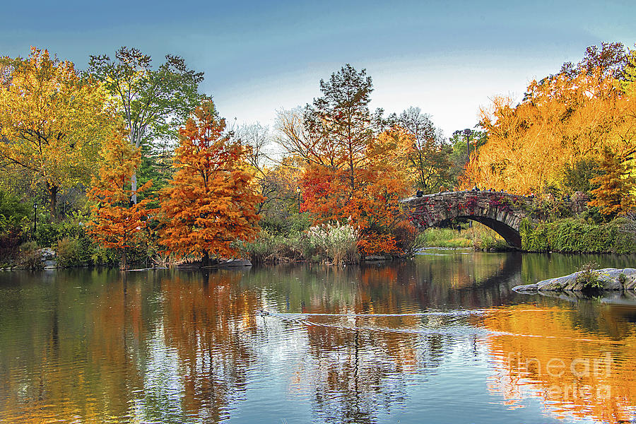 Autumn Gold at Central Park Pond by Regina Geoghan