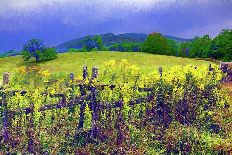Autumn Goldenrod and Stormy Skies ap by Dan Carmichael