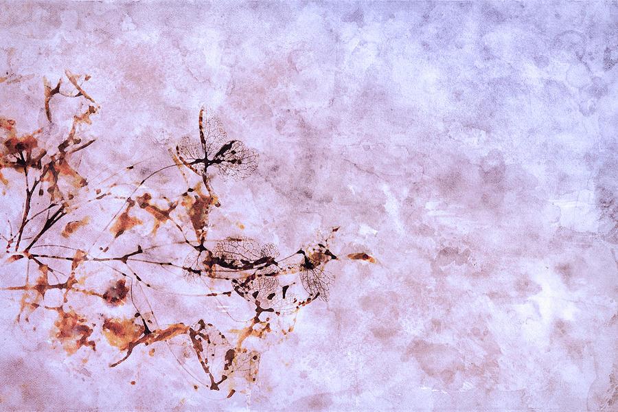 Autumn Hydrangea Digital Art