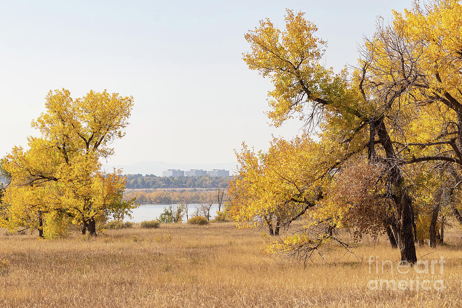 Autumn Photograph - Autumn In Cherry Creek State Park by Nicki Hoffman