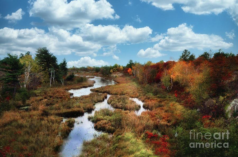 Autumn In Northern Ontario Canada Photograph
