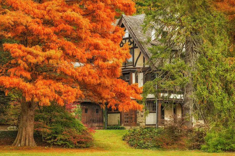 Autumn In The Garden State  by Susan Candelario