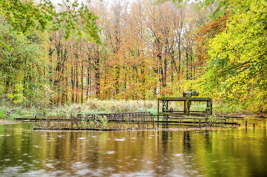 Autumn in the Hydraulic Forest by Frans Blok