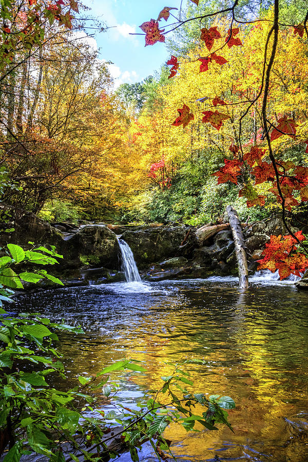 Autumn in the Mountains II by Debra and Dave Vanderlaan
