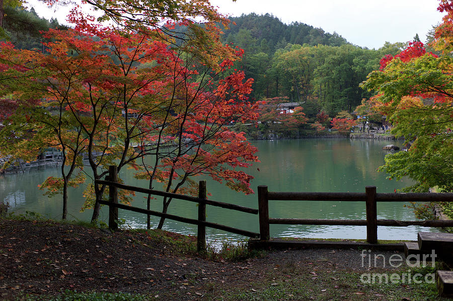 Autumn Leaves And Village Photograph