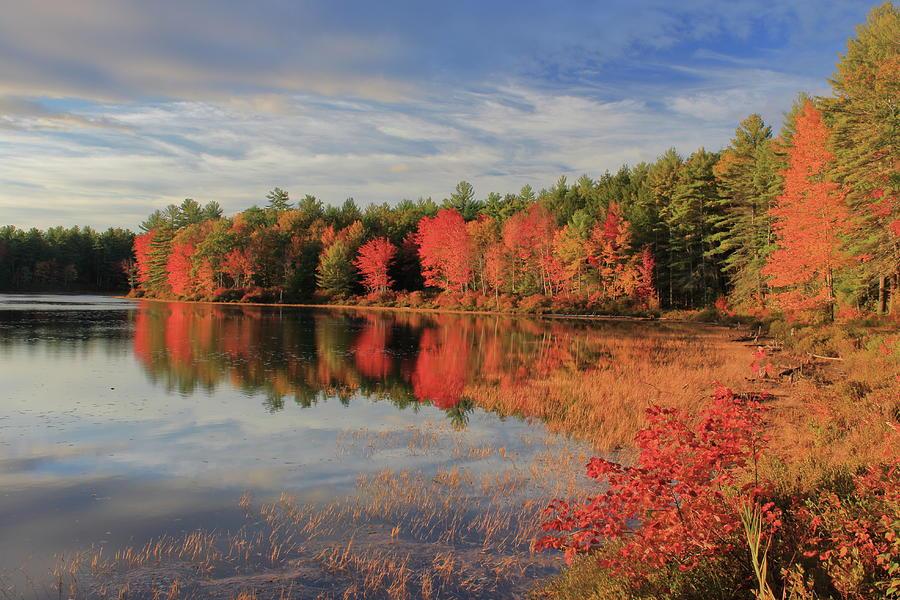 Autumn Light At Bassett Pond Photograph