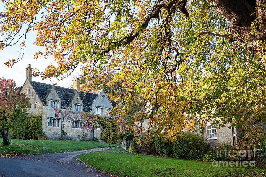 Autumn Light in Saintbury Cotswolds by Tim Gainey