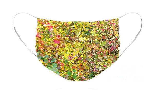 Autumn Monet Mask Photograph