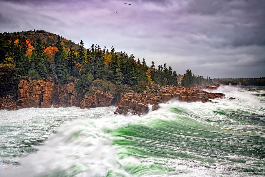 Autumn Nor'easter in Monument Cove by Rick Berk