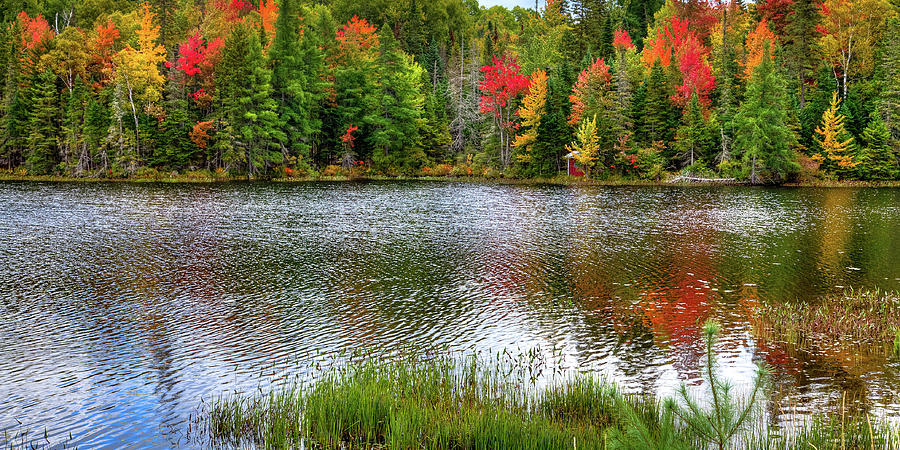 Autumn on Lake Abanakee by David Patterson