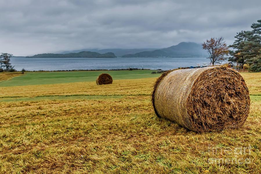 Autumn On Loch Lomond Photograph