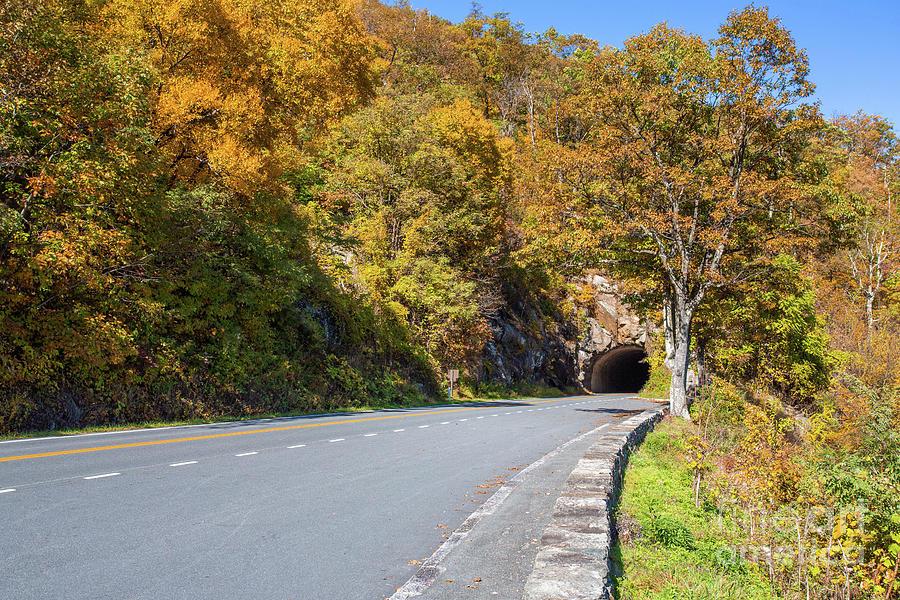 Autumn On Skyline Drive Shenandoah National Park Virginia Photograph
