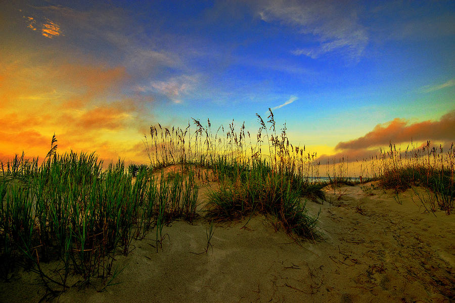 Autumn On The Outer Banks by John Harding