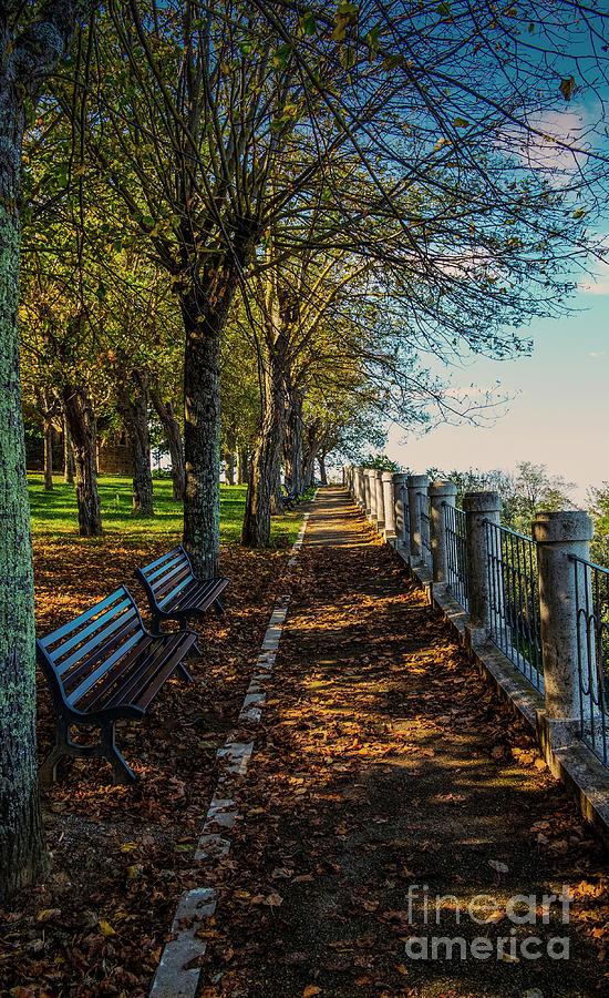 Landscape Photograph - Autumn Pathway by Virgil Harper