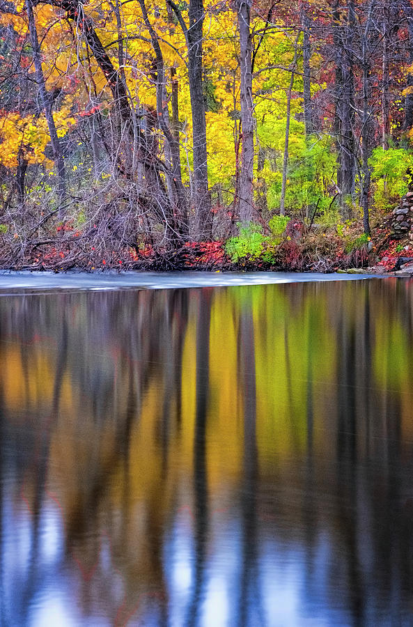 Autumn Reflection III by Tom Singleton
