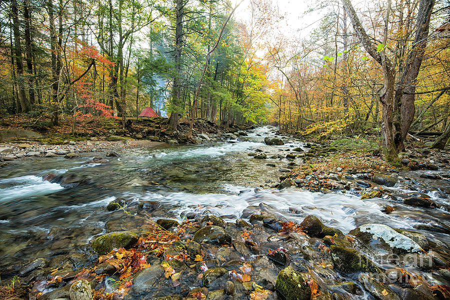 Landscape Photograph - Autumn River In Great Smoky Mountains by Felix Lai