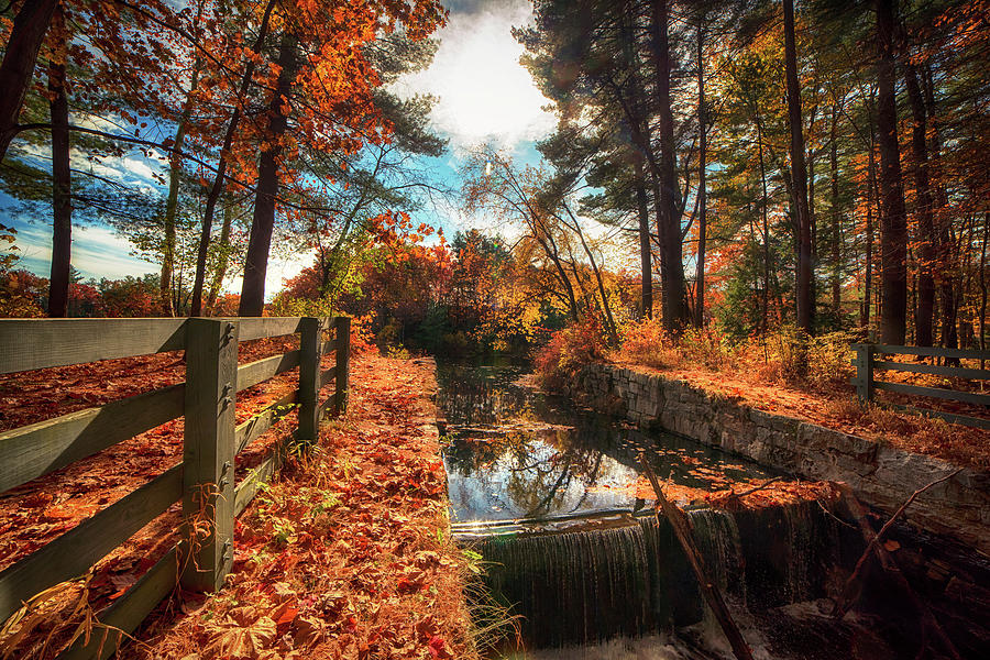 Autumn River - Mine Falls Park by Joann Vitali
