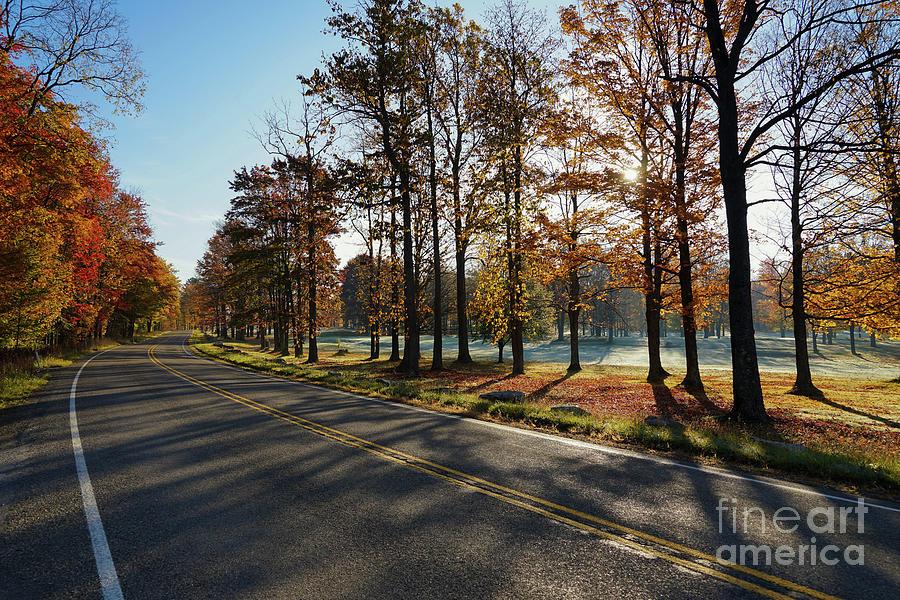 Autumn Road Trip Photograph
