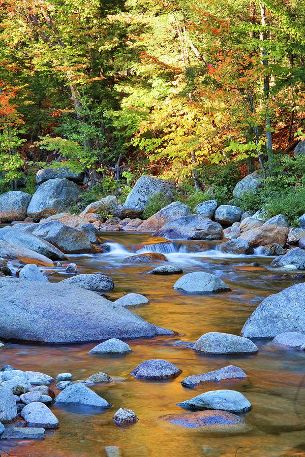 Autumn Rocks by Cliff Wassmann