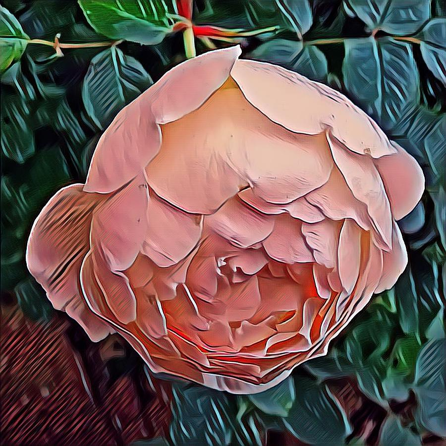 Autumn Rose Mixed Media