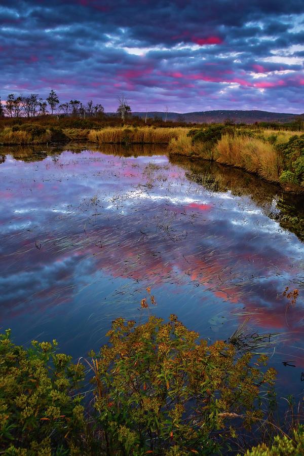 Autumn Skies Photograph
