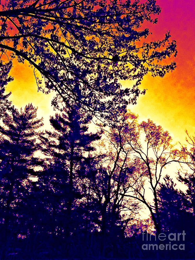 Autumn Sunrise Abstract - Thermal Effect by Frank J Casella