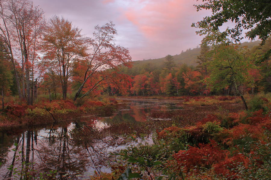 Autumn Sunset on the Tully River by John Burk