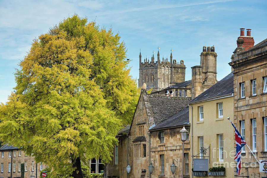Autumn Tree Chipping Campden by Tim Gainey