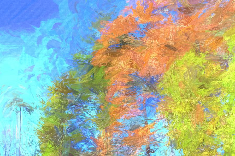 Autumn Trees Abstract Art by David Pyatt