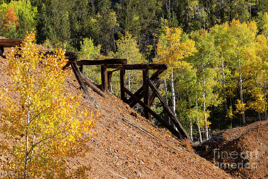 Autumn Trestle Photograph