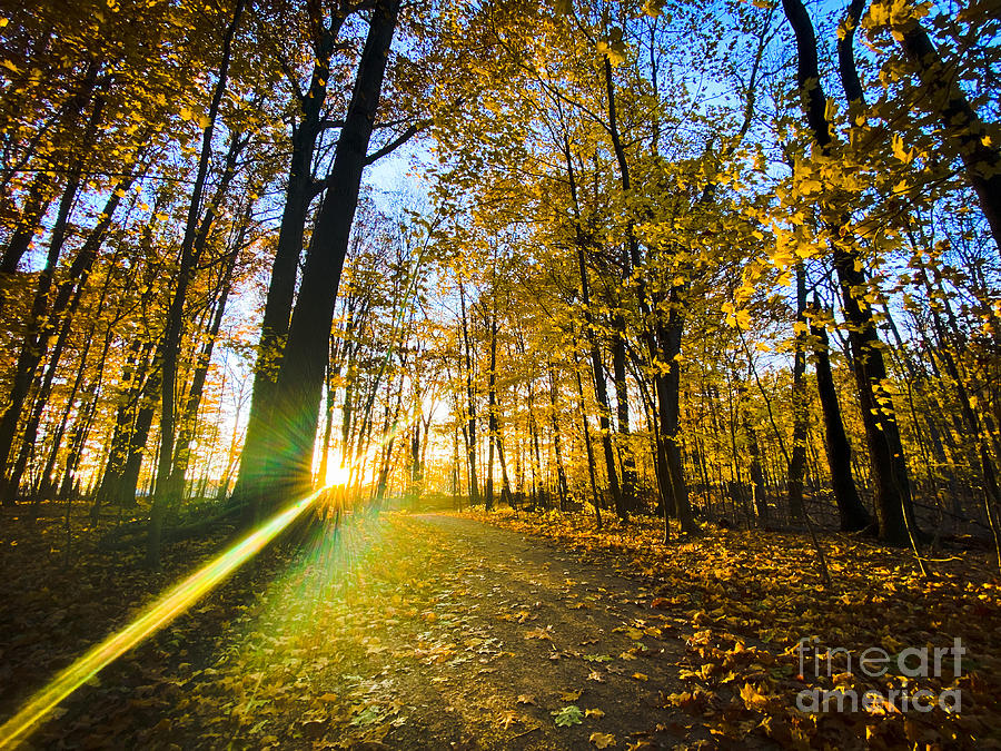 Autumn Vibes Hiking Photograph