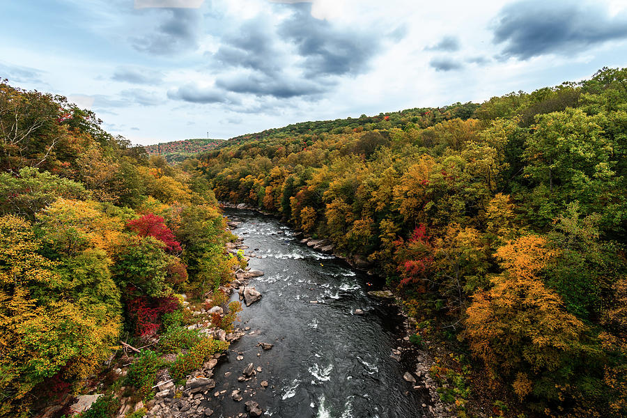 Autumn View Photograph