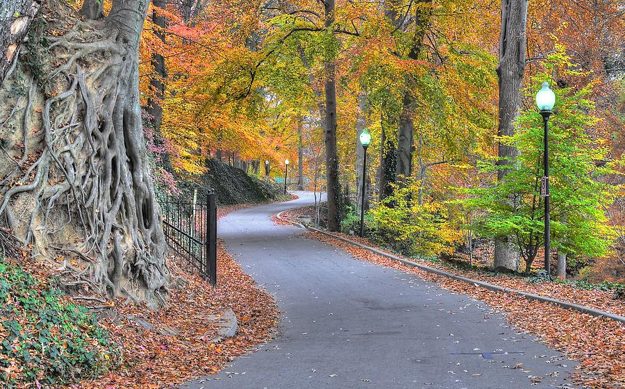 Autumn Walk at Falls Park by Blaine Owens Photography