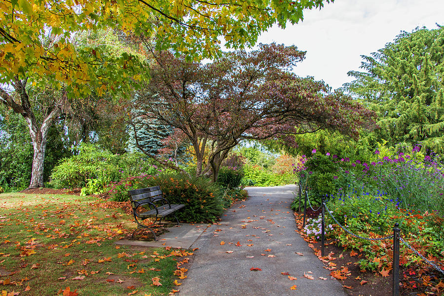 Gardens Photograph - Autumn Walk, Butchart Gardens, Vancouver Island, BC by Venetia Featherstone-Witty