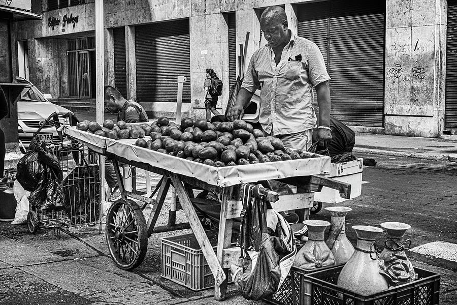 Avocado Street Vendor Cali Valle del Cauca Colombia by Adam Rainoff