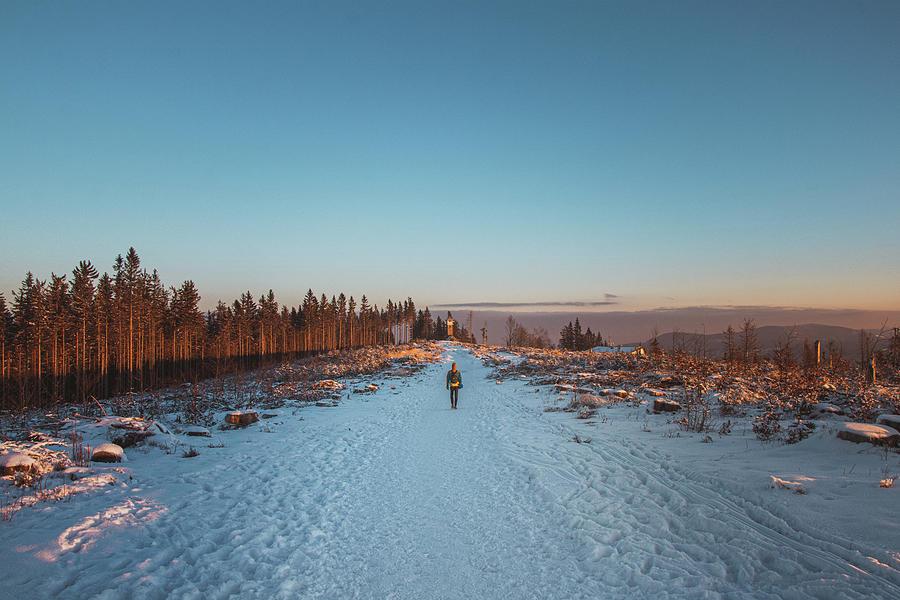 Awakening Of Life - Winter Sunrise Photograph