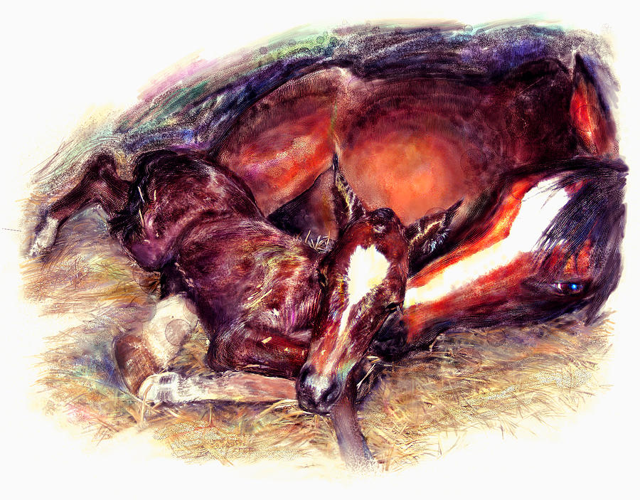 Horse Painting - Awkward First Meeting Arabian Mare With Newborn Foal  by Connie Moses