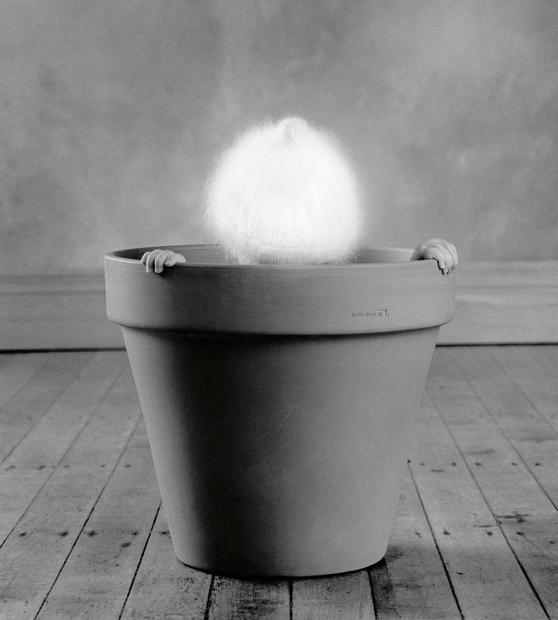 Black & White Photograph - Baby Cactus by Anne Geddes