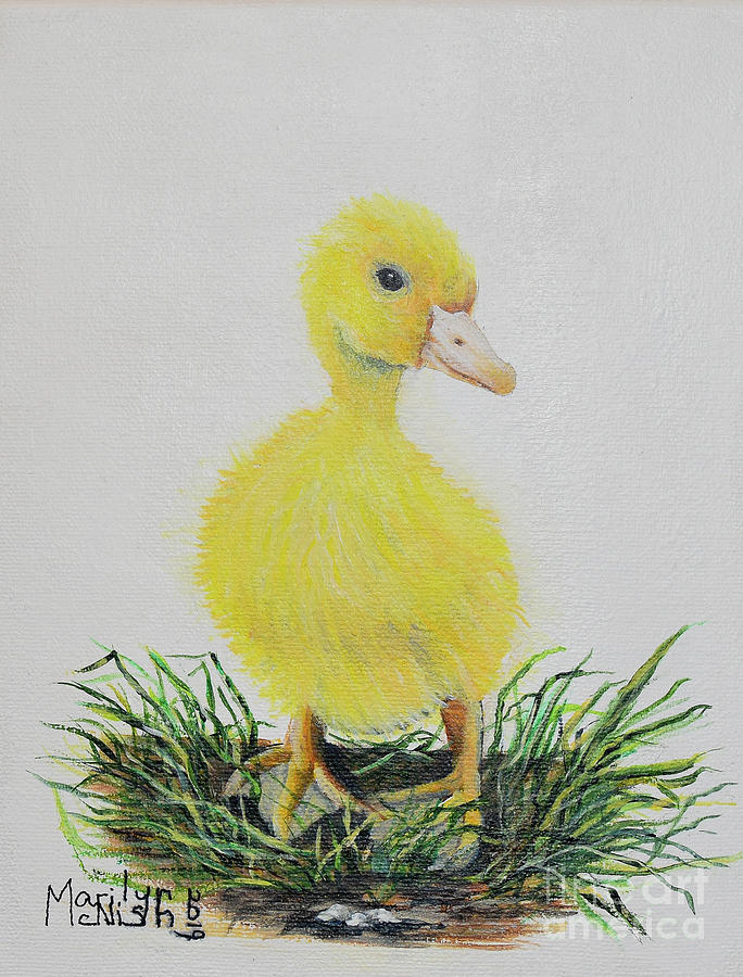 Baby Duckling by Marilyn McNish