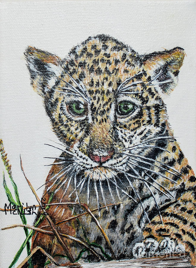 Baby Jaguar by Marilyn McNish