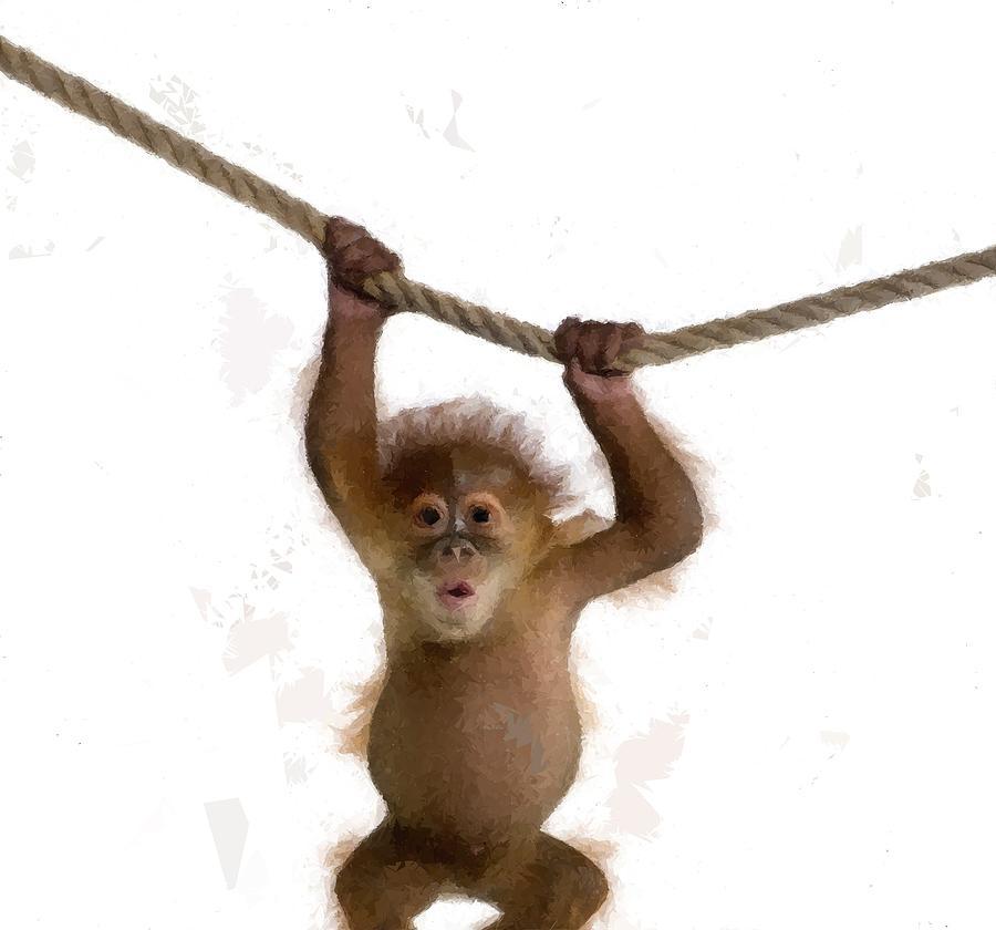 Baby Orangutan Monkey Childs Room Drawing